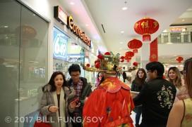 2017 Chinese New Year Image 800x533