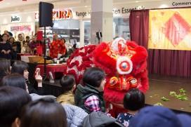 2018 Chinese New Year 2590