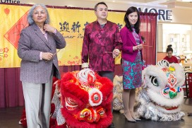 2018 Chinese New Year 2574